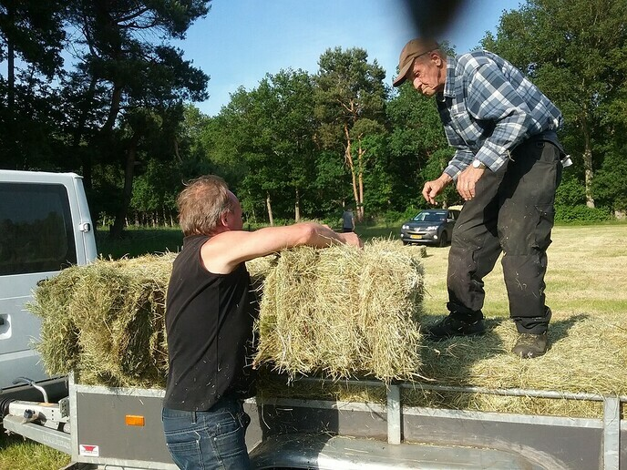 Heuifeest in Oldleusen - Foto: Ingezonden foto