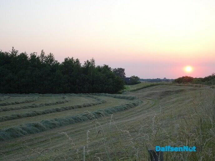 Zwoele zomeravond - Foto: Ingezonden foto