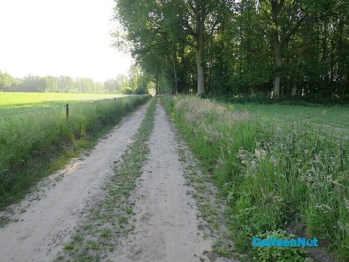 Wandeling Oude Vechtsteeg, met geschiedenis Koningsweg - Foto: Wim