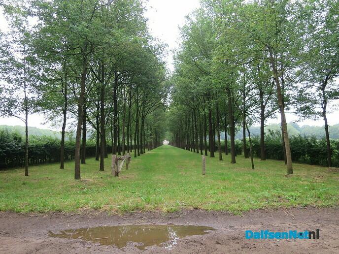 Wandeling van Hoonhorst, over Zuidelijke Vechtdijk en Marshoek - Foto: Wim