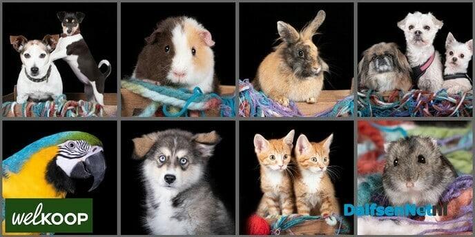 Dierenfotograaf bij Welkoop Dalfsen - Foto: Ingezonden foto