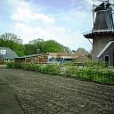 Glad werk rond de molen in Hoonhorst