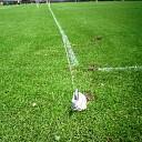 Hoonhorst voetbalt straks weer mooi tussen de witte lijntjes