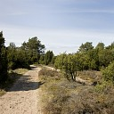 Landschap Overijssel doet het goed bij Overijsselaar