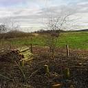 K(n)apwerk bij Landschap Overijssel