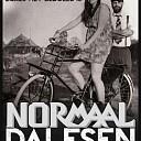 Normaal naar Dalfsen: HØKEN