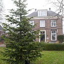 Plaatsing kerstboom bij Hospice wordt traditie.