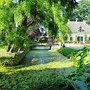 Prachtige wandeling van Sterrebosch naar Den Aalshorst