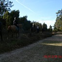 Ponyclub Dalfsen e.o.