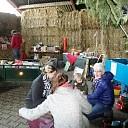 Rommelmarkt in kerstsfeer en paarden verwennen.