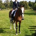 Ponyclub Dalfsen