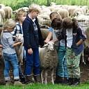 Op Stap met de schaapherder  Anita