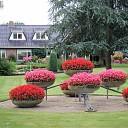 Prachtige tuin aan de Schoolstraat maar ook W I E T