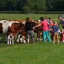 Vrijdag 16 september open dag melkveebedrijf familie Grondman Witharen