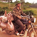 Dinsdag 10 januari boeiende fotoavond over Vietnam