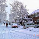 De winter van 2006 kon er ook wat van