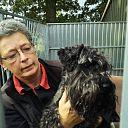 Loslopende hond die van de N35 is weer thuis