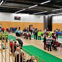 Provinciaal koersbaltoernooi in Dalfsen met veertig teams
