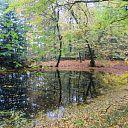 De Mataram en de Horte prachtige herfstkleuren