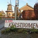 Hoonhorsters halen hun kerstboom ook dit jaar weer bij Herman