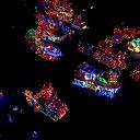 Dronebeelden verlichte optocht 2018