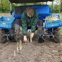 Nieuwe elektrische oogstmachine asperges