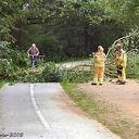 Omgevallen boom zorgt voor file op de Oude Oever