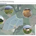 Inloop -Informatieavond over  Zonneweide Molenhoekweg Dalfsen