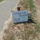 Zet fietsers niet in de stof