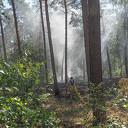 Handcrew Overijssel: natuurbrand bestrijden met de hand