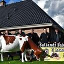 Sallands Bakfeest komt eraan, en jij kan daarbij zijn!