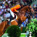 320 paarden bij Jumping Zwolle