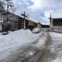 Wintergroet