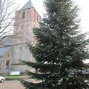 Tranende kerstboom