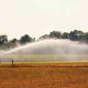 """Evaluatie droogte: """"Watervraag was extreem groot"""""""
