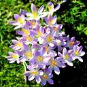 Het voorjaar lonkt…..