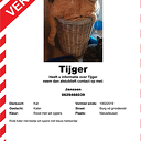 Tijger vermist