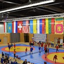 Internationaal deelnemersveld bij Dutch Open Sambo & Combat-Sambo in de Trefkoele+