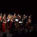 Sprankelend concert van Haydn Jeugd Strijk Orkest in Stoomfabriek