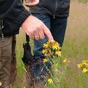 Workshop 'Leren beleven' voor natuurvrijwilligers