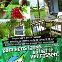 Echte komkommertijd op de decohof in Hoonhorst