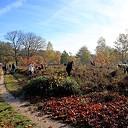 Natuurwerkdag Boswachterij Staphorst
