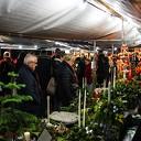 Kerstmarkt op de Ambelt