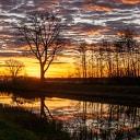 Zwolse natuurfotograaf maakte in Dalfsen deze prachtige foto's