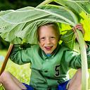 Actie: Gratis groentezaad voor basisscholen