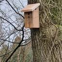 Gratis nestkastjes voor inwoners gemeente
