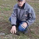 Eerste kievitsei van Overijssel in Dalmsholte gevonden