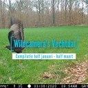 Wildcamera's Vechtdal compilatie 9 diersoorten