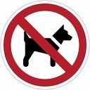 Hondenbeleid: wees solidair