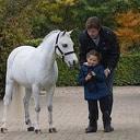 Pony  uit Nieuwleusen van 2 ton  als verjaardagscadeau
